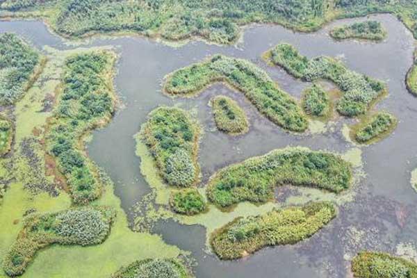 航拍江苏赤山湖国家湿地公园夏日旖旎