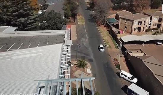 南非一居民区遭狒狒骚扰 蹿房越脊聒噪无比