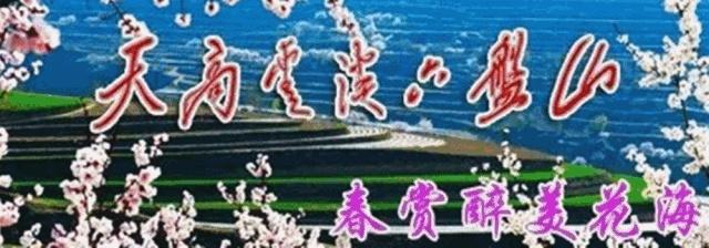 7月27日,宁夏固原首届梯田花儿节将盛大开幕!