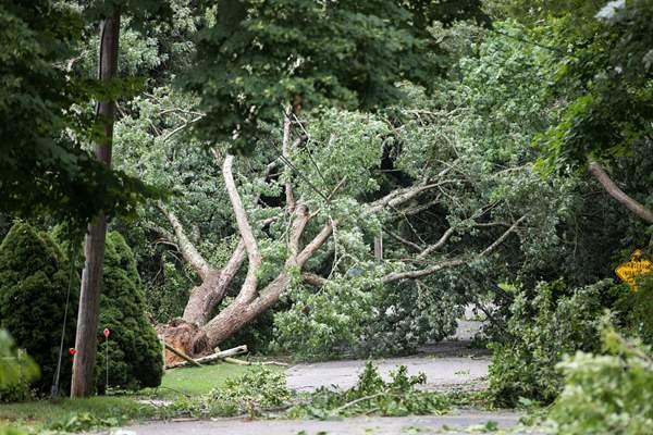 美国马塞诸塞州遭龙卷风侵袭 现一片狼藉