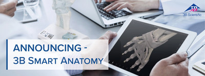 3B Smart Anatomy – the new generation of anatomical models just launched by 3B Scientific