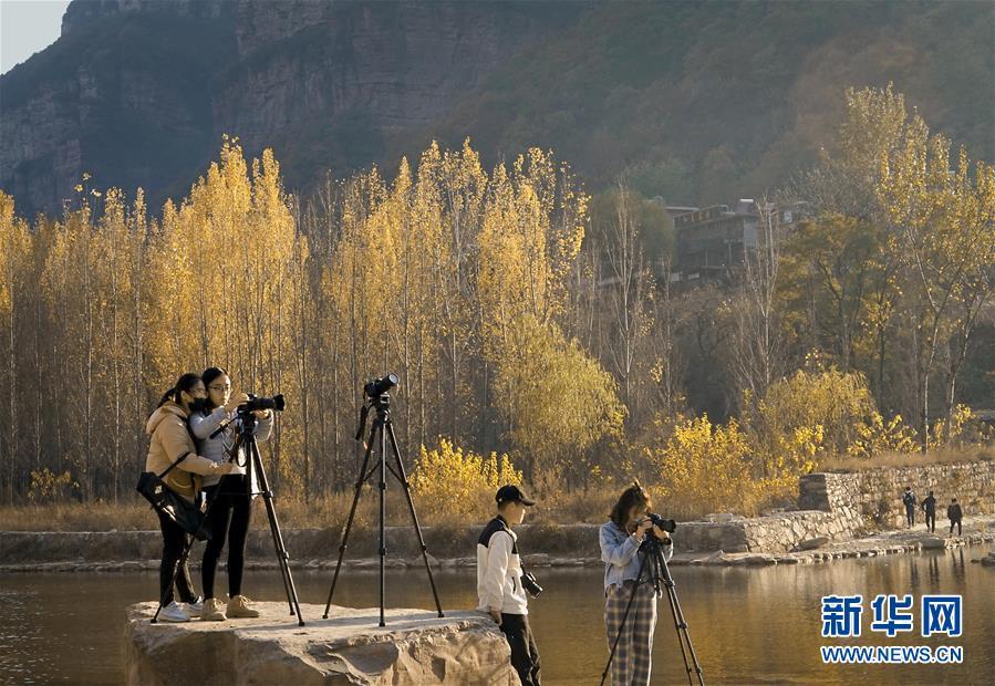 中原河南:盛满丰收的田野 大有可为的土地