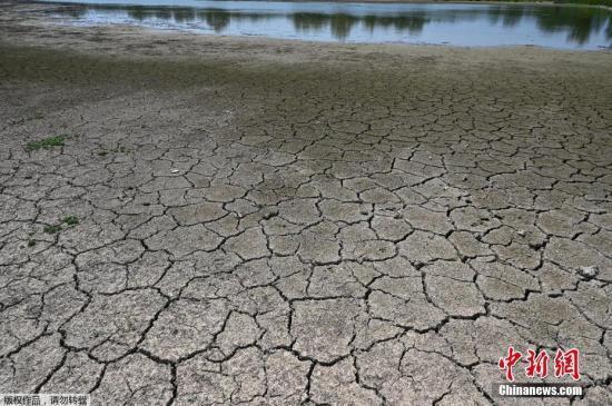 欧洲高温影响核电站运行 或致农作物收成急剧下降