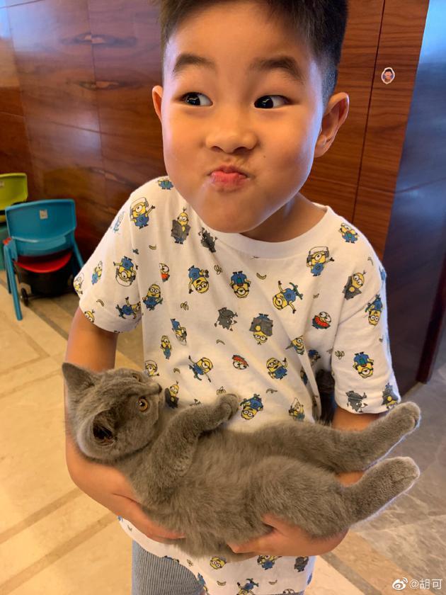 小鱼儿怀抱小猫咪搞怪