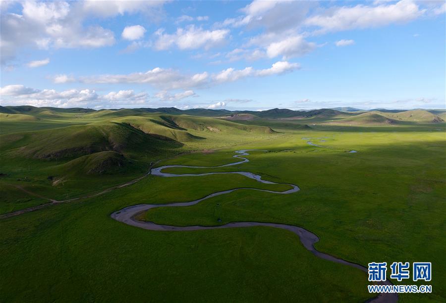 内蒙古:盛夏草原美如画