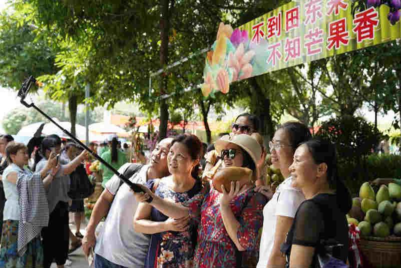 广西田东:芒果丰收引客来