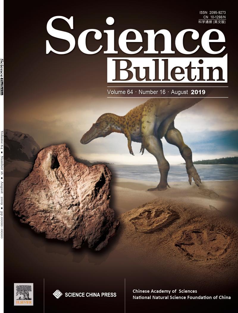 中国江西发现亚洲首例霸王龙足迹,化石尺寸惊人