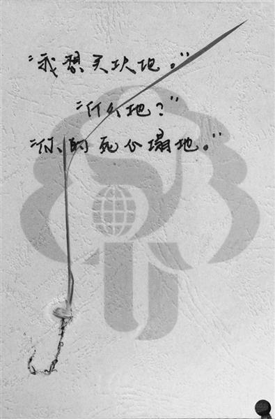 """""""彩蛋卡""""+小禾苗 农学院通知书接地气"""