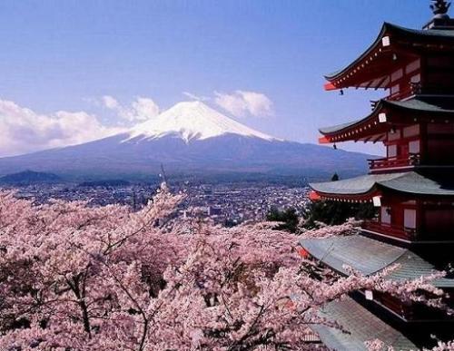 日本30日起对中国游客逐步开启网上签证通道