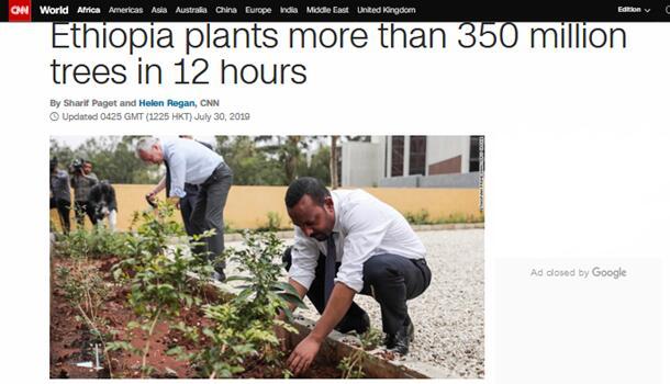 半天内种约3.53亿棵树!埃塞俄比亚这个植树活动,可能创世界纪录