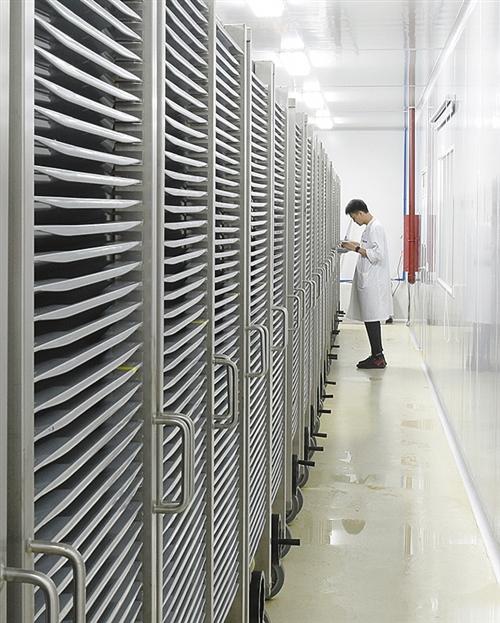 qq自在梦想jk加点姜大声回应风闻三重感染加辐射 我国科学家发现强力灭蚊新东西