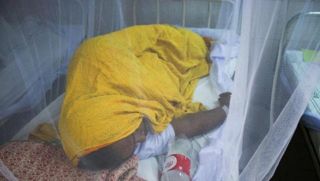 孟加拉国遇史上最严重疫情 24小时内千余人确诊登革热