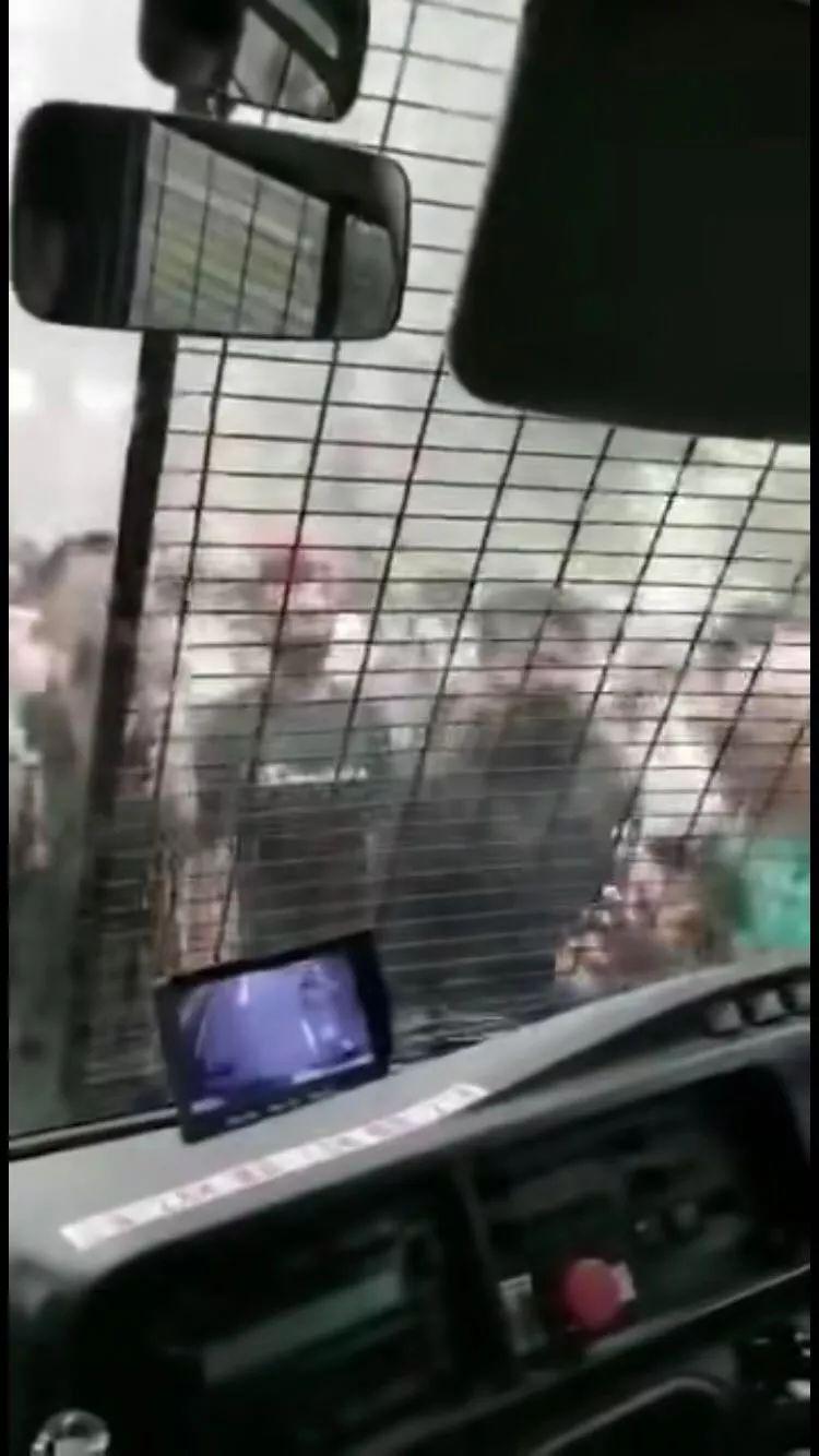 香港示威者不是暴徒?敢不敢看看这段视频!