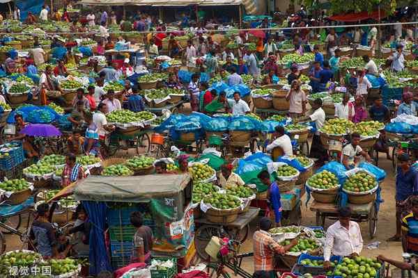 孟加拉国水果市场芒果交易 每天多达数千吨芒果被出售