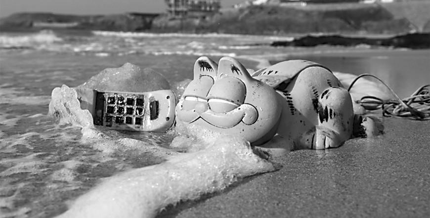 """法国神秘海滩的""""加菲猫之谜"""""""