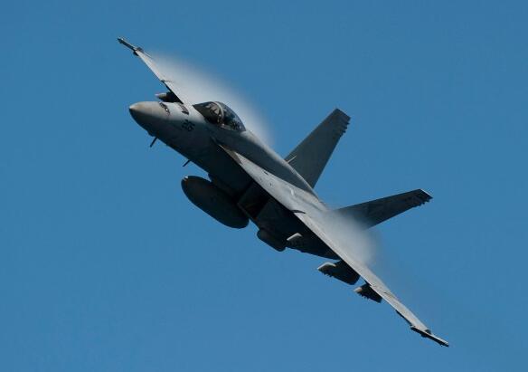 美海军F/A-18E战机坠入公园 致7名游客受伤