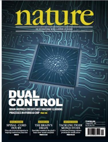 零的突破!中国新型徐招网类脑计算芯片首登《自然》封面