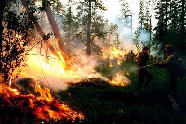 俄罗斯发生多起森林火灾 ?#31449;?#35201;求军队参与灭火