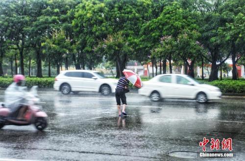 """台风""""韦帕""""华南沿海掀狂风骤雨 风暴潮警报升级"""