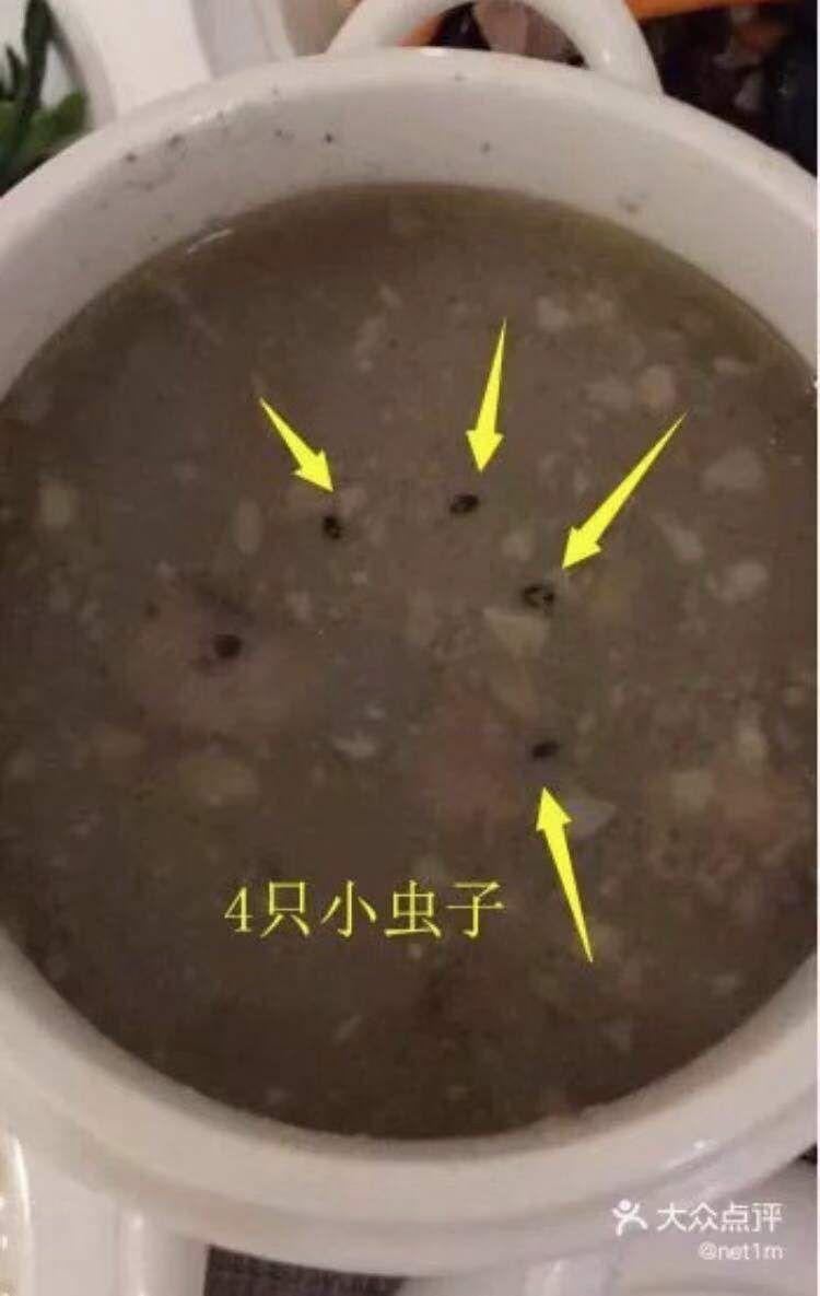 新生儿入住月子中心14天却得了肺炎,一碗月子汤里竟有4只小虫!