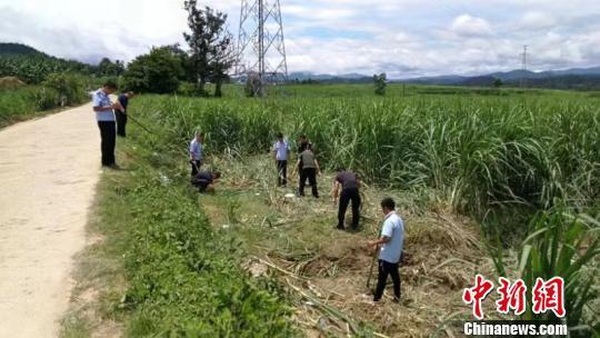 云南西双版纳发生野象伤人事件 致1人死亡