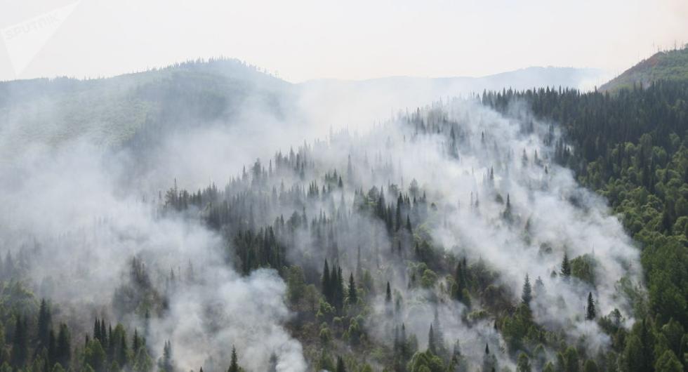 弦小杰昌业廷俄军方4天救活75万公顷 仍有200万公顷森林焚烧