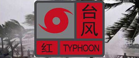 """红色预警!超强台风""""利奇马""""!"""