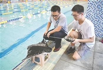 仿生蝠鲼潜航器在西安研制成功