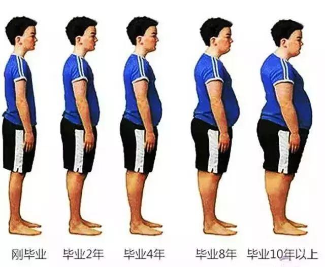 十大最易发胖职业榜单出炉!小编真的看哭了