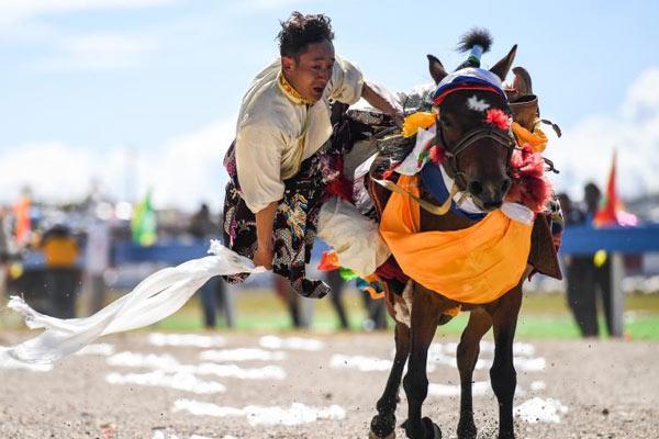 藏北草原城市那曲迎赛马节