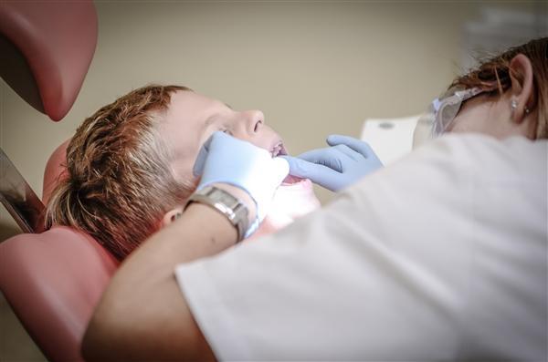科学家发现治疗牙齿的新机制 将带来新治疗方案