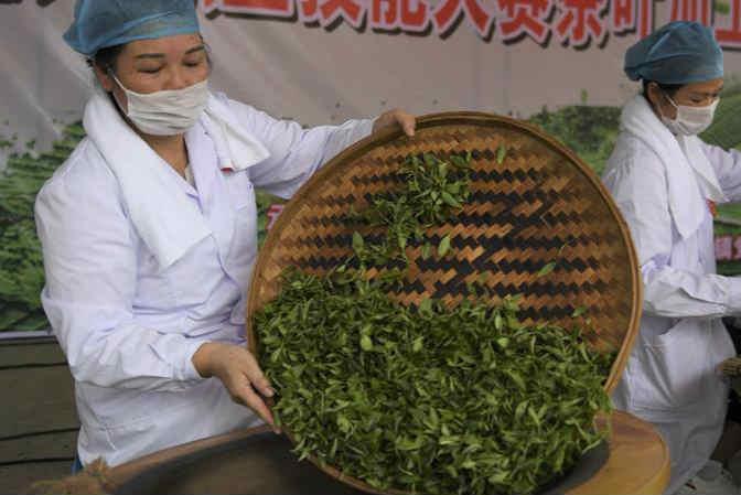 广西玉林:炒茶叶 赛技能