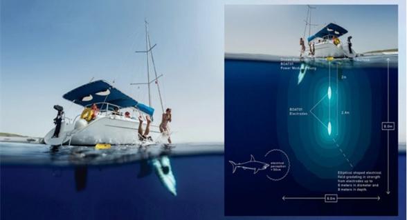 新型BOAT01驱鲨器用电场使鲨鱼远离船只和码头