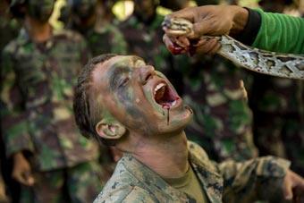 美军士兵在印尼学习丛林生存技能 品尝蛇血树汁