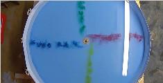 奇观!水在赤道上是怎么流动的?