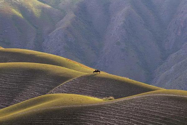 新疆伊犁:醉美喀拉峻草原
