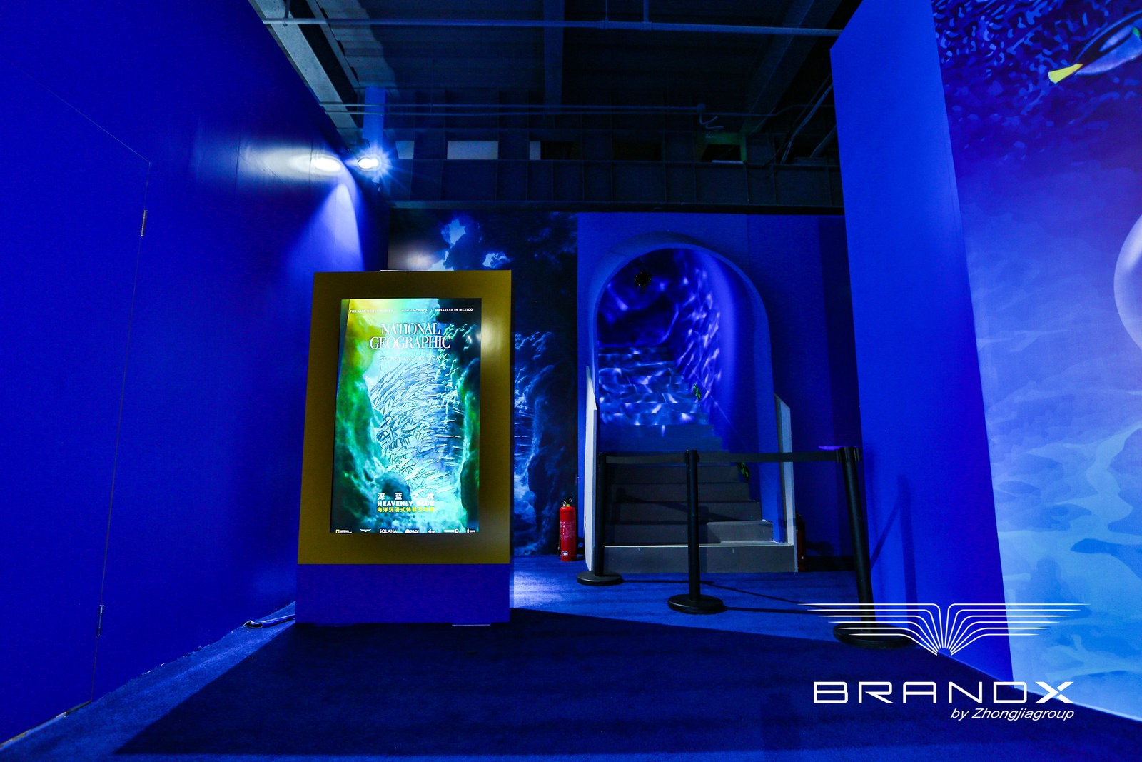 海洋沉浸式体验互动展《国家地理·深蓝》在京开展