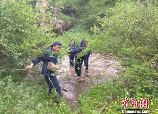甘肃渭源护林员三十载行走大山:溪流解渴 干饼充饥