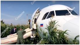 """俄客机撞鸟后平安迫降玉米地,克宫将给飞行员发""""国家级奖励"""""""