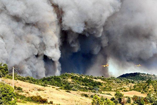 法国奥德省发生森林火灾 现场浓烟滚滚