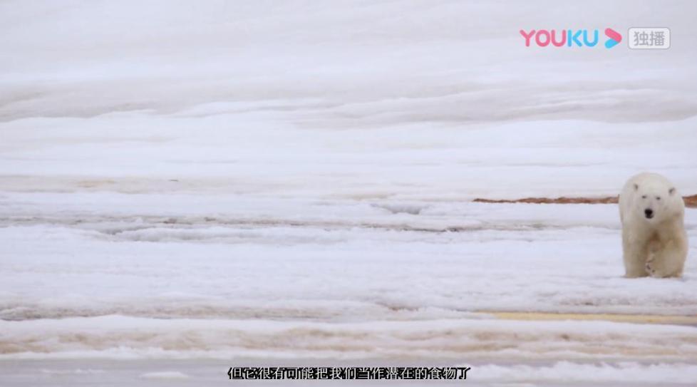 《十个世界尽头》上演极地探险记 队员险些成为北极