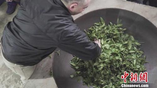 美国人:背90斤茶砖走川藏茶马古道 体验中国传统茶文化