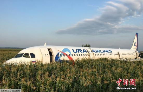 俄客机因撞鸟群迫降致75伤 机长解释为何在玉米地着陆