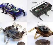 踩扁还能跑的蟑螂机器人