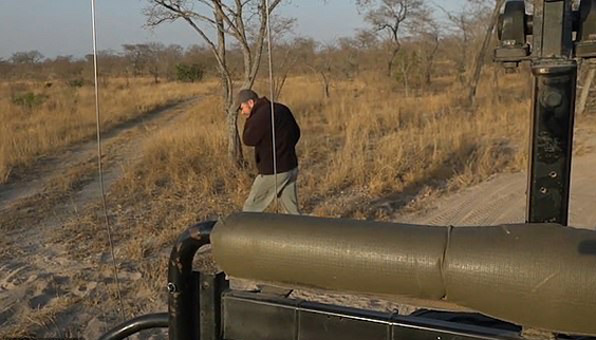 惊险!南非向导追踪狮子足迹 未发现狮群就在眼前