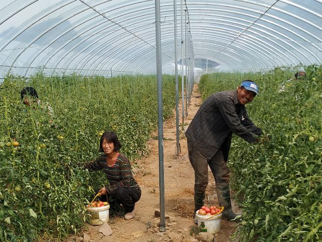 """""""三农""""、产业与生态扶贫相结合 张家口金控探索乡村振兴之路"""