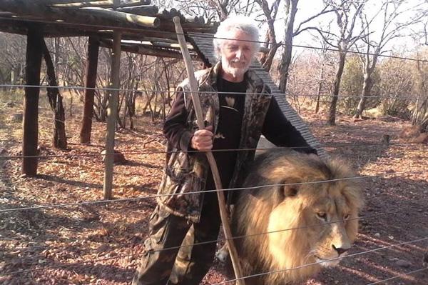 南非一养狮人遭狮子袭击 三只狮子均被射杀