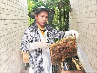 """""""80后""""蜂疗师:用蜜蜂""""针灸"""" 为患者治病"""