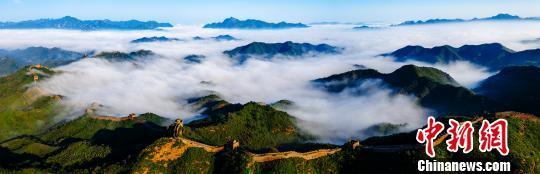 一场秋雨后 金山岭长城云雾缭绕似仙境