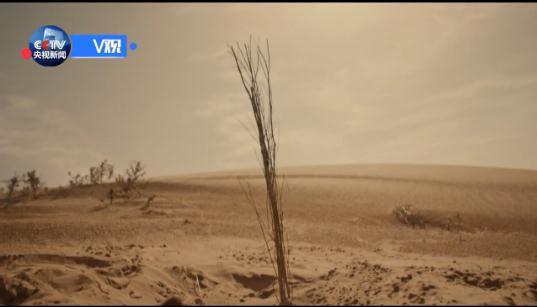 习近平甘肃行 | 看八步沙林场新面貌